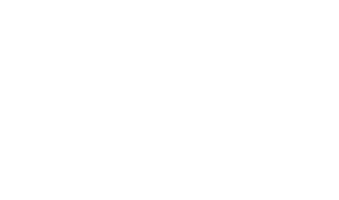 Chronik label